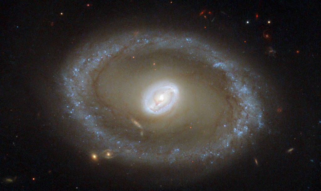 El anillo dorado de la formación de estrellas